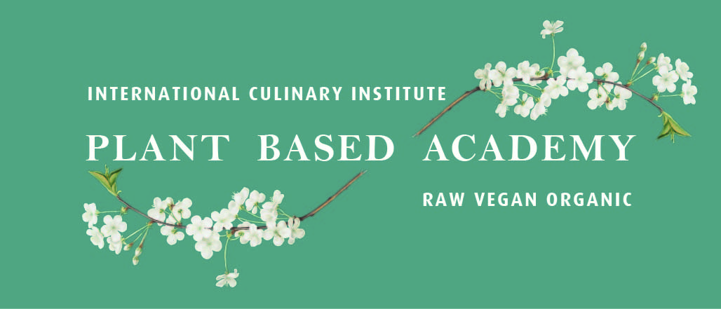 Plant Based Academy  Logo